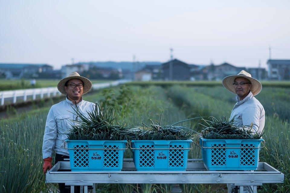 農業法人KNOWCHの村田代表と佐藤役員